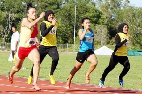 第7届东南亚学生体育运动会:越南夺得4枚金牌 hinh anh 1