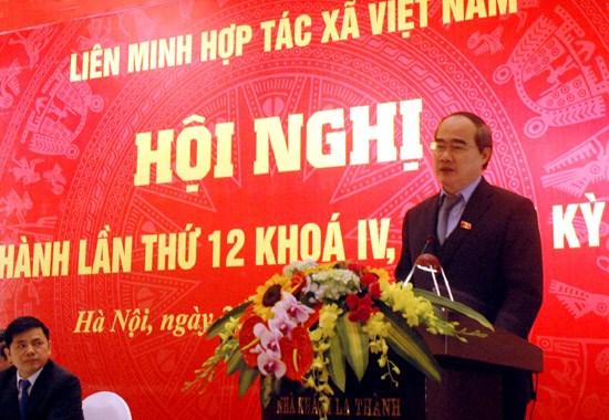 越南农业结构重组进程的最重要主体是新型合作社 hinh anh 1