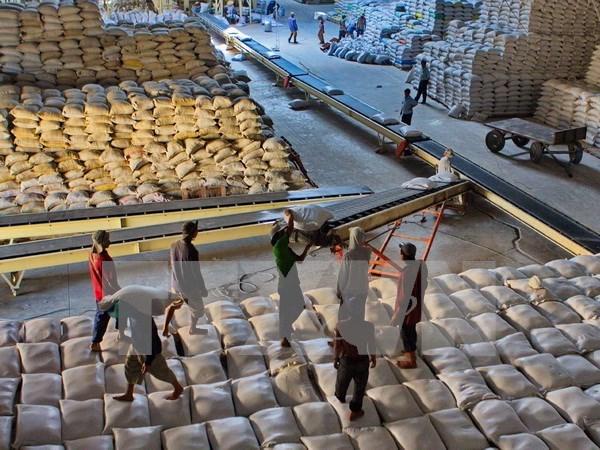 安江省:大米出口量有望超额完成全年计划 hinh anh 1