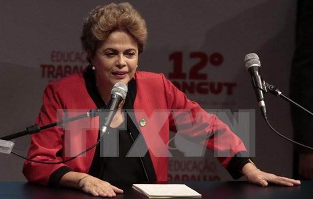巴西总统因国家内部问题取消访问越南等亚洲国家 hinh anh 1