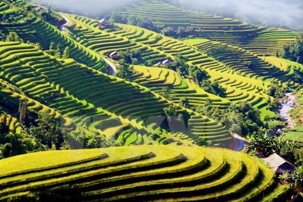 越南河江省—东南亚颇具吸引力的旅游线路之一 hinh anh 1