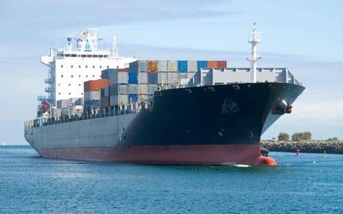 越南与巴西签署海上运输协议 hinh anh 1