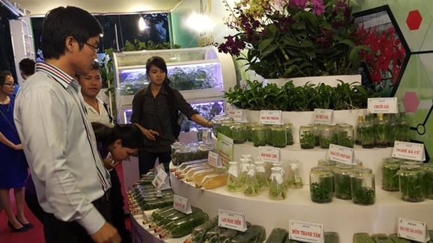 2015越南高科技农业与食品工业展览会吸引近150家企业参加 hinh anh 1