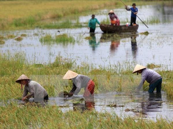 """题为""""气候变化的影响及其应对措施""""研讨会在兴安省举行 hinh anh 1"""