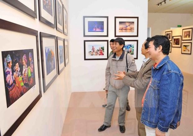 第八届越南国际艺术摄影图片大赛颁奖仪式在河内举行 hinh anh 2