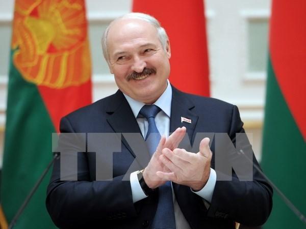 白俄罗斯总统即将对越南进行国事访问 hinh anh 1