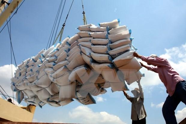 印尼将从越南进口100万吨大米 hinh anh 1