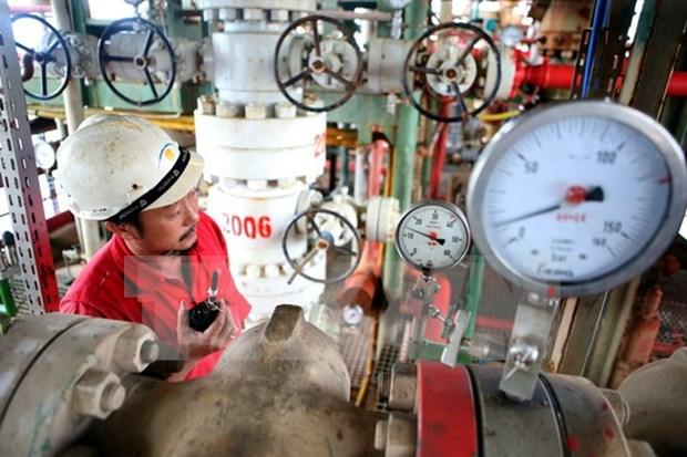 越俄石油联营公司将白兔油田ThTC-02平台投入运营 hinh anh 1