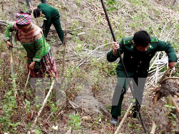 越南清化省边防部队和老挝华潘省军事指挥部加强合作 hinh anh 1