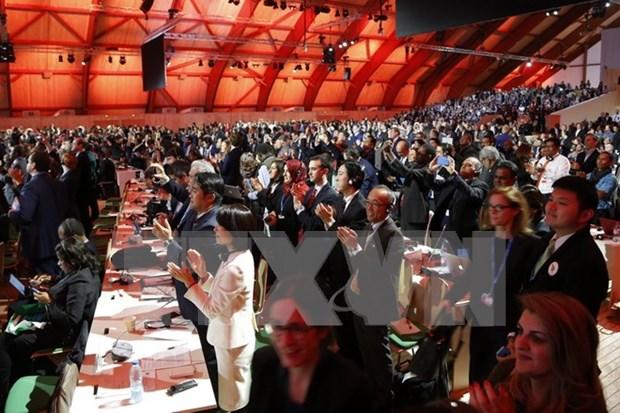 越南对COP 21通过《巴黎协定》表示欢迎 hinh anh 1
