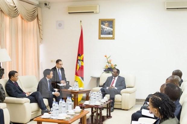 越南国会与莫桑比克议会加强合作 hinh anh 1