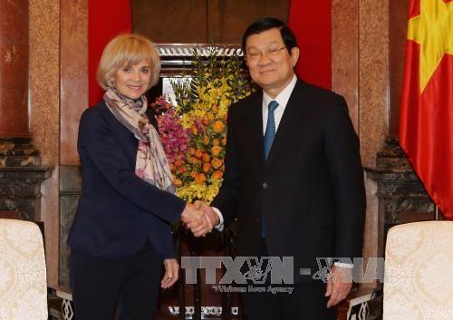 国家主席张晋创会见法国议会外交事务委员会主席伊丽莎白 hinh anh 1