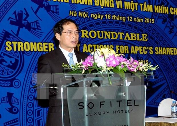 越南为2017年APEC峰会成功举办作出充分准备 hinh anh 1
