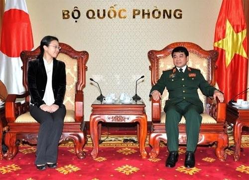 日本维和力量将向越南提供多领域、多层次的长期协助 hinh anh 1
