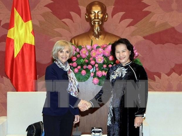 越南国会副主席阮氏金银会见法国国民议会外交委员会主席伊丽莎白•吉古 hinh anh 1