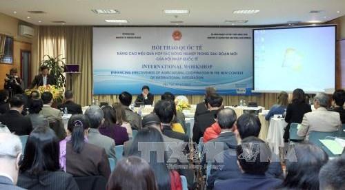 提高农业在融入国际社会新阶段的合作效益 hinh anh 2