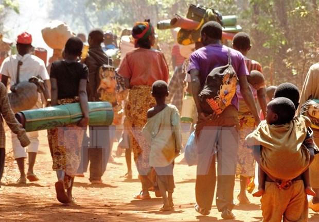 越南呼吁有关各方努力通过对话寻找和平方式解决布隆迪人权危机 hinh anh 1