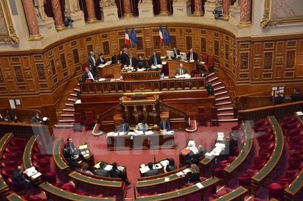 欧洲议会和法国参议院通过《越南与欧盟全面合作伙伴框架协定》 hinh anh 1
