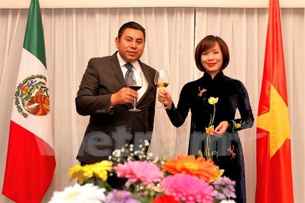 越南岘港市和墨西哥托卢卡市缔结友好城市 hinh anh 1