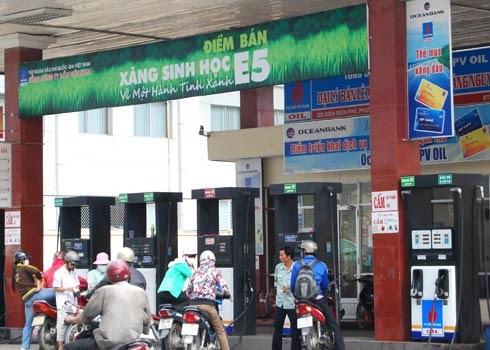 胡志明市生物汽油销售量仅占市场份额的4% hinh anh 1