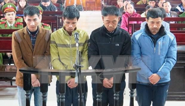 越南河静省脚手架坍塌案:4名被告人被判处30个月至42个月不等的有期徒刑 hinh anh 1