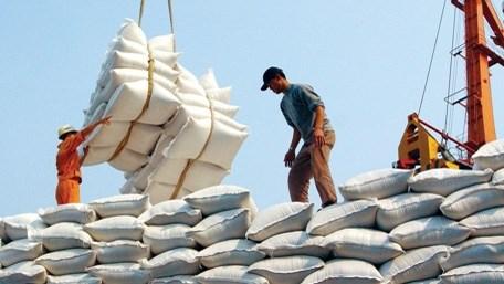 越南大米出口量达600万吨以上 hinh anh 1