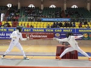 2015年越南全国青年击剑锦标赛:河内市击剑队暂居首位 hinh anh 1