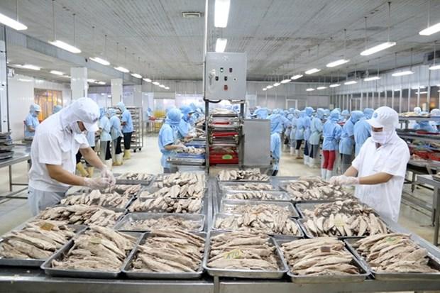 越南农林水产网上集市正式开通 hinh anh 1