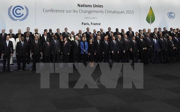 越南为第21届联合国气候变化大会的成功作出重要贡献 hinh anh 1