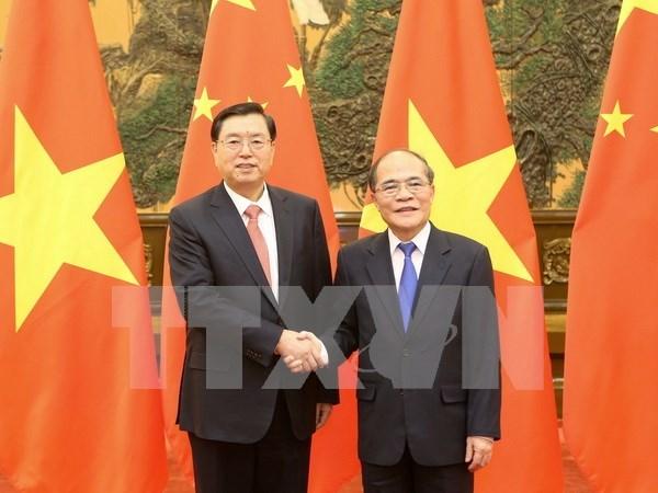 越南国会主席阮生雄与中国全国人大常委会委员长张德江举行会谈 hinh anh 1