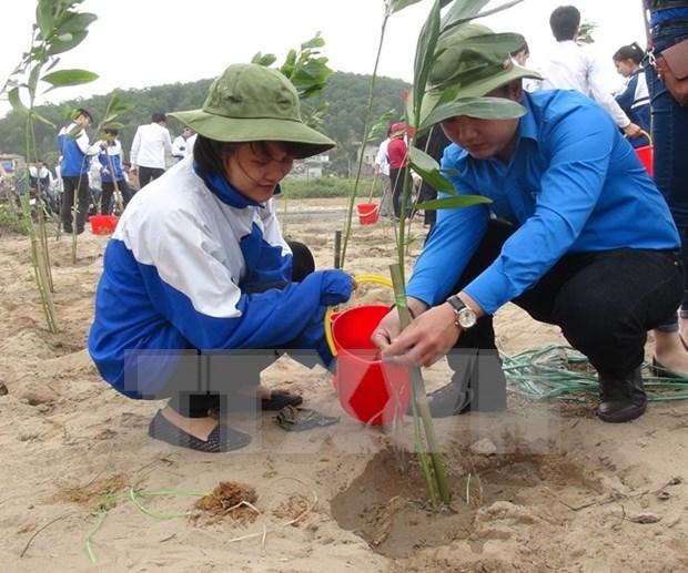 越南为第21届联合国气候变化大会的成功作出重要贡献 hinh anh 4