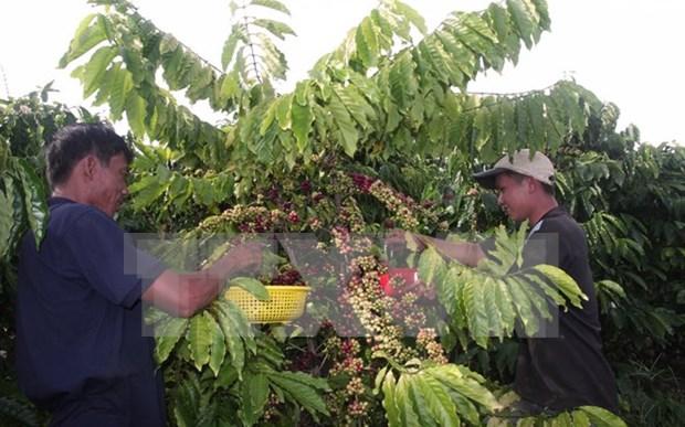 2015年越南出口额降至5年来最低水平 hinh anh 2