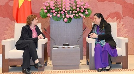德国自由民主党秘书长:德方支持促进越德合作关系日益向前迈进 hinh anh 1