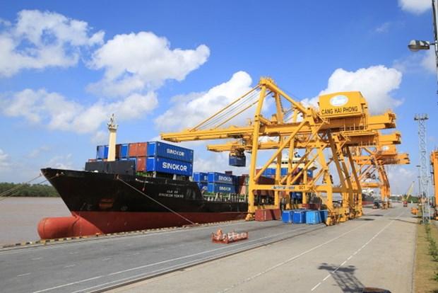 2015年海防港货物吞吐量达3180万吨 hinh anh 1