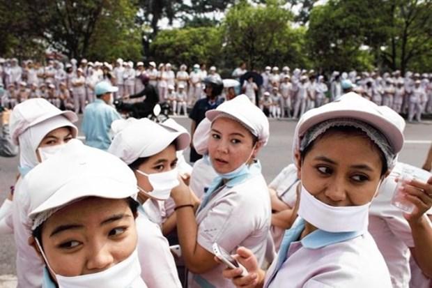 印尼充分挖掘劳动力优势 迈向东盟经济共同体 hinh anh 1