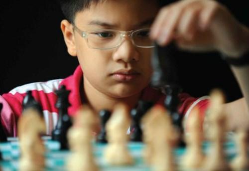 东南亚国际象棋锦标赛:越南选手阮英魁和阮氏梅兴夺冠 hinh anh 1