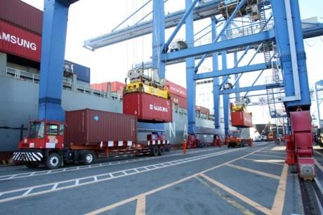 薪港—西贡港迎来2016年首批货物入港 hinh anh 1