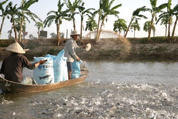 越南农业部门重组结构以融入国际和加快发展 hinh anh 4