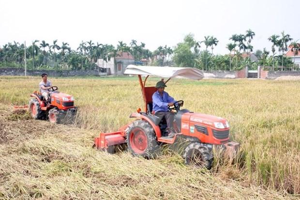 越南农业部门重组结构以融入国际和加快发展 hinh anh 1