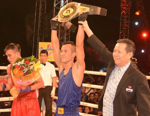 2015年Let's Viet冠军杯拳击和传统武术比赛决赛落幕 hinh anh 1