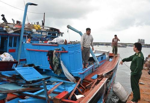 越南渔业协会反对中国船只撞沉越南渔船 hinh anh 1