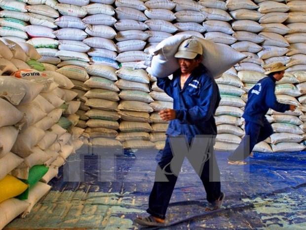 越南农产品对中国出口量猛增 hinh anh 1
