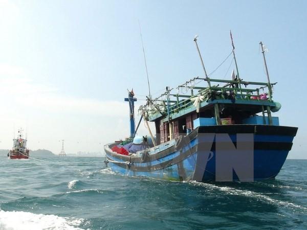平定省在海上被撞沉的渔船上全部8名渔民安全获救 hinh anh 1