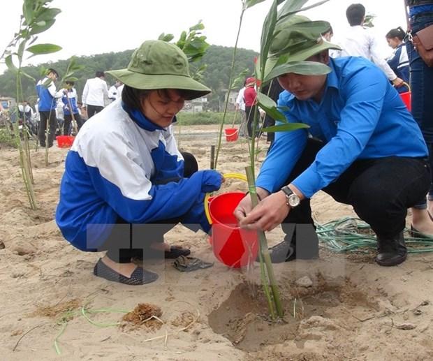 2016年:越南采取配套措施应对气候变化 hinh anh 2