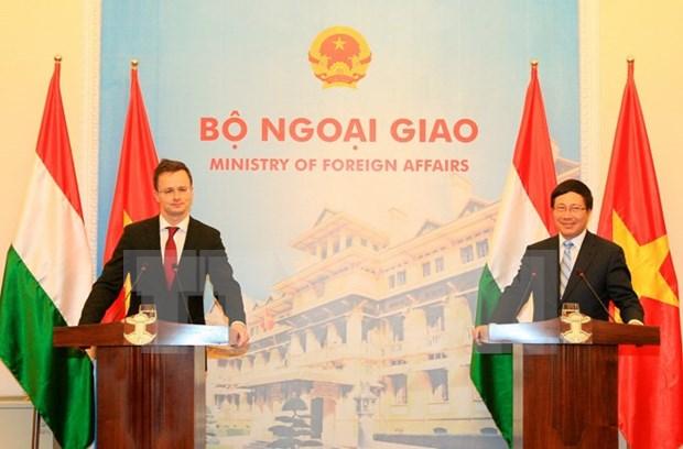进一步促进越匈两国友谊与合作 hinh anh 1