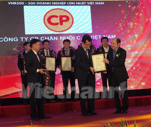 2015年越南企业500强排行榜揭晓 hinh anh 1