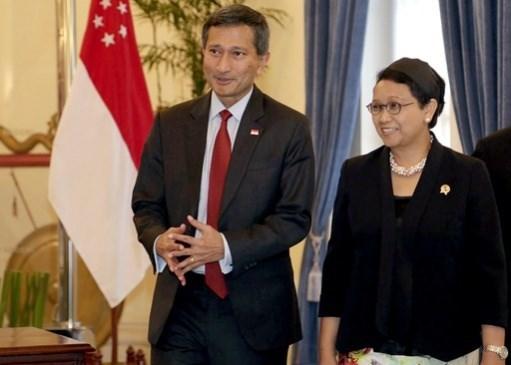 印度尼西亚与新加坡加强多个领域的合作 hinh anh 1