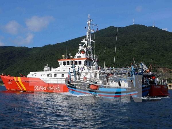 越南平定省渔船被撞沉事件:越南有关机关进行核实并查明肇事者 hinh anh 1
