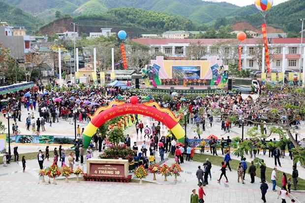 广宁省金花茶节开幕 推广旅游新产品和吸引投资 hinh anh 1