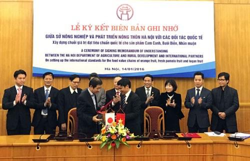 河内扩大对日本和马来西亚农产品出口 hinh anh 1